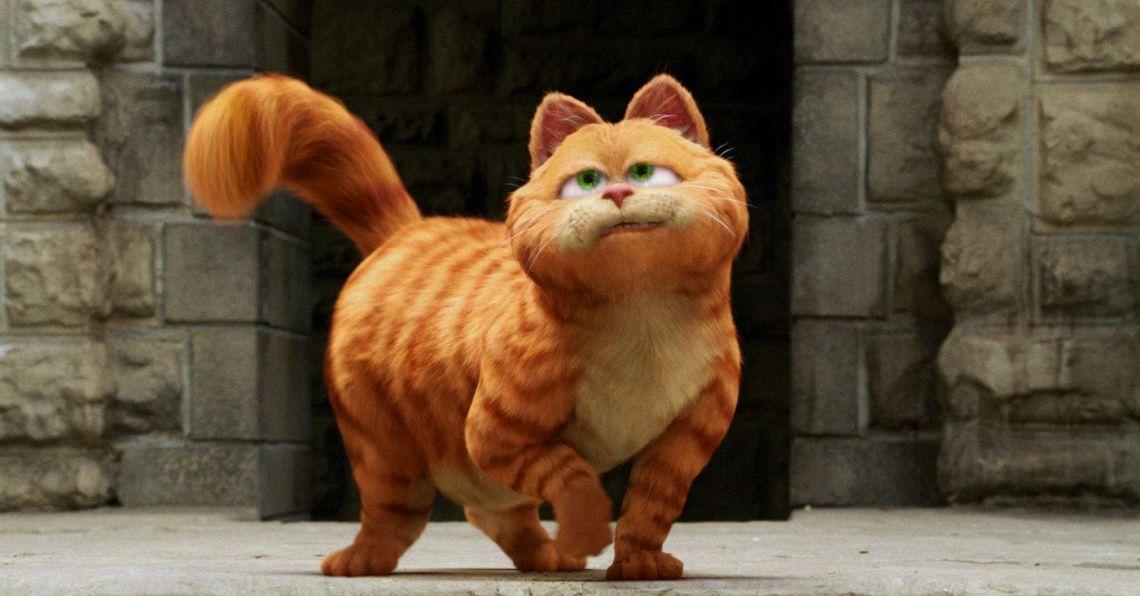 Днем, прикольные картинки кота из мультика